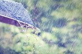 Closeup Rain drops falling on umbrella