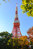 Tokyo tower in autumn with blue sky.