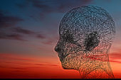 Wired face on sunset sky background. Psychology and connection concept 3D rendering.Wired face on sunset sky background. Psychology and connection idea.