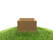 Empty cardboard box on grass white background 3D illustration with copy space.