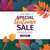 Template design discount banner for autumn season. Poster for special fall sale with flower and herb, autumnal leaf decoration. Layout  for offer and promotion on natural, floral background. Vector.