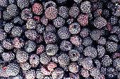 crop of black raspberry