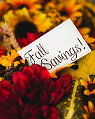Fall savings message in vibrant fall flowers