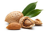 Almond nut isolated