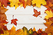 Group of fallen autumn maple leaves on white wooden background