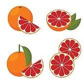 Icon Grapefruit. Vector illustration.