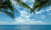 cloud at blue sky over ocean with palm leaves