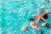 Vacation concept with starfish ,seashells on blue water,summer holiday concept