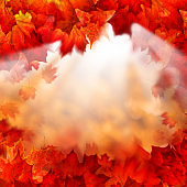 Abstract Autumn Background. Autumn Maple Leaves and Morning Sun