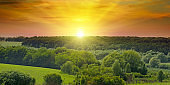 Green fields and a bright sunrise over the horizon. The hills are covered with trees and shrubs. Wide photo. Agricultural landscape.