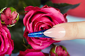 Finger with long artificial blue french manicured nail