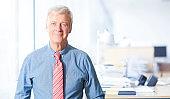 Executive businessman portrait