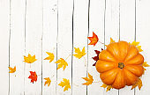 Thanksgiving background: Pumpkins and fallen leaves on white wooden background.  Halloween or Thanksgiving day or seasonal autumnal.  Flat lay. Top view