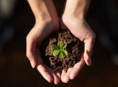 The key to a greener planet is in your hands