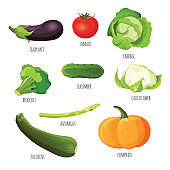 Vegetables set. Eggplant, tomato, cabbage, broccoli, cucumber, cauliflower, pumpkin, zucchini