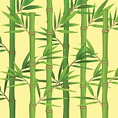 Stalks of bamboo with green leaves flat theme in realistic
