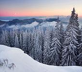 frosty sunrise in Carpathians