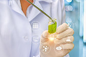 Biotechnology researcher concept or biotech science.