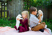 Sister and brother with dogs. Cut pets with girl and boy.