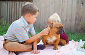Happy kids playing with puppies in sunny day. Cute boy and girl