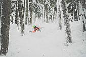Snowboarder in Action in Fresh Powder Snow