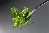 Fresh green salad with spinach,arugula and lettuce