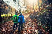 Little boys walking in autumn forest