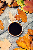 Abstract background with  autumn leaves and hot coffee cup. Yellow Fallen autumn leaves