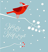 Bird Santa Claus on Branch ,Text - Happy Holidays!, Xmas  and  Merry Christmas Decoration, Snowflakes