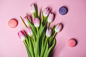 Pink tulips on paper background