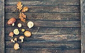 Annulated boletus  and autumn leaves on wooden background. Yellow boletus mushrooms on wood top view.