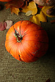 food background with ripe pumpkin