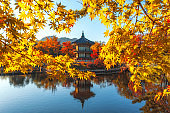 Gyeongbokgung Palace With maple leaves in the fall colors, Seoul, South Korea