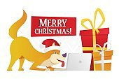 Merry Christmas postcard template with the cute yellow dog with the big red and yellow gifts on white background. The dog cartoon character ordering Christmas gifts vector flat illustration.