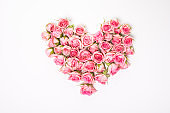 Flower composition. Heart Shaped Pink Rose Arrangement on a White Background.