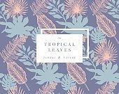Tropical palm leaves. Jungle design template. Vector illustration