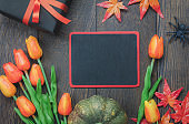 Top view Happy Halloween Holiday background with decoration. Blackboard for free space word.The pumpkin handmade,orange forest leaf,colorful tulip,gift and spiders on wooden background.Flat lay.