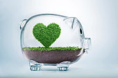 Saving love, growing heart concept