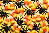 Halloween Candy And Plastic Spiders