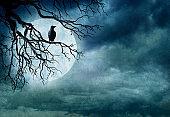 Black Raven Sitting In Barren Tree Against Full Moon