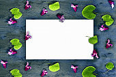 White card on a pattern of pink flowers and round green leaves on a gray aged textured wooden background. Place for text.