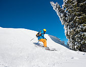Professional freeride skier skiing in the mountains on a sunny winter day. Blue sky and winter forest on the background