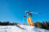 Low angle shot of a male skier skiing on fresh snow in the mountains on a sunny beautiful day. Blue sky and winter forest on the background. extreme fun happiness activity lifestyle concept