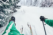 Skier walks in snow forest