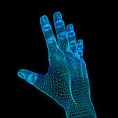 3d Futuristic Wireframe Human Hand Model
