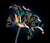 color glass flower isolated on black , the lilly