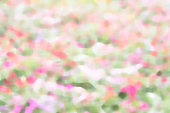 texture blur nature colorful style background