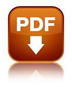 PDF download icon special brown square button