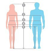 Silhuettes of man and women in full length with measurement lines of body parameters . Man and women sizes measurements.  Human body measurements and proportions.
