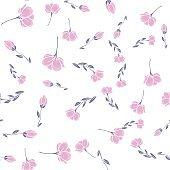 sakura pattern on white background
